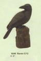 "PT09248 - 8"" Raven"