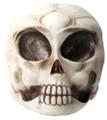 YTC8391 - Alien Skull
