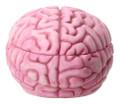 """YTC8407 - 3.25"""" Zombie Brain Trinket Box"""