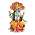 """PT10073 - 8"""" Vishnu"""
