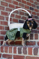 Green Leaf Dog Dress