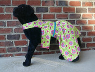 Lady Bug Dog Dress