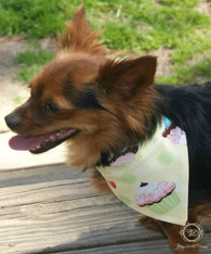 Spring and Summer Dog Bandana Collection, Slider Bandana