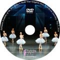 Perimeter Ballet Recital 2014: Sat 5/3/2014 10:00 am DVD
