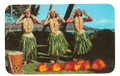 Vintage Hula Maidens Waikiki Postcard by Max Basker & Sons - 1960's