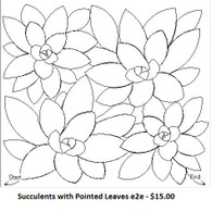Succulents with Pointed Leaves e2e