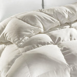 DownTown Company Hermitage Siberian Down Winter Comforter