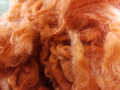 Borderdale Fleece, Dyed (Rust) - 1lb
