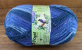 Opal Rainforest 14 4-Ply Sock Yarn, Simon the Soup Meister