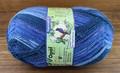 Opal Rainforest 14 4-Ply Sock Yarn, Simon the Soup Meister