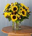 Martha Stewart Brillant Sunflower Medley