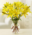 Yellow Lily Bouquet