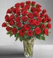 Ultimate Elegance Premium Long Stem Red Roses (Four Dozen)