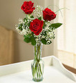 Love's embrace-3 Red Rose Bud Vase