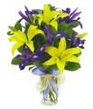 Iris & Lilies