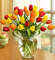 Harvest Tulips (Small)
