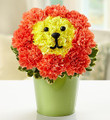 Blooming Lion