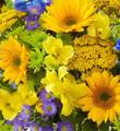 August's Bouquet