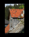 """Roof Peak"" by Croatian Photographer Don Wolf:  STEEPLY DISCOUNTED PRICE!"