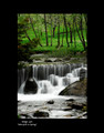 """Waterfall in Spring"" by Croatian Photographer Don Wolf:  STEEPLY DISCOUNTED PRICE!"