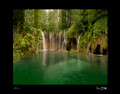 """Plitvice National Park"" by Croatian Photographer Don Wolf: STEEPLY DISCOUNTED PRICE!"