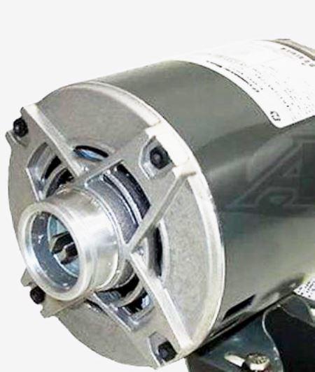 motor-df-1.jpg