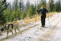 Multisport Harness, polar fleece padding