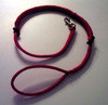 Adanac bungee leashes are the best for walking active dogs.