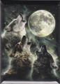 Three Wolf Moon magnet