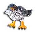 Falcon Eddie KPT-FAL
