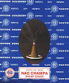 Nag Champa incense cone 12 pack with stand