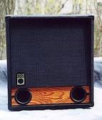 Raezer's Edge Bass 12 Speaker Cabinet  front