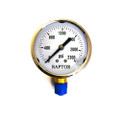"304 - S.S. Bottom Mount Pressure Gauge, 1/4"", 0-2300 PSI"