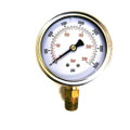 "305 - S.S. Bottom Mount Pressure Gauge, 1/4"", 0-3500 PSI"