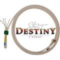 Cactus Destiny 4 Strand Calf Rope