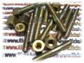 Stud 677139A 671232A 13543721 Nut Kit