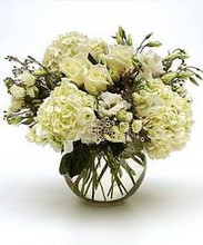 White Hydrangea Mix