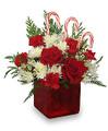 Fresh Mixed Floral Arrangement