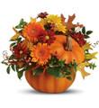 Fresh Pumpkin Floral Mix