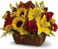Fresh Sunflowers, Roses and lily Mix