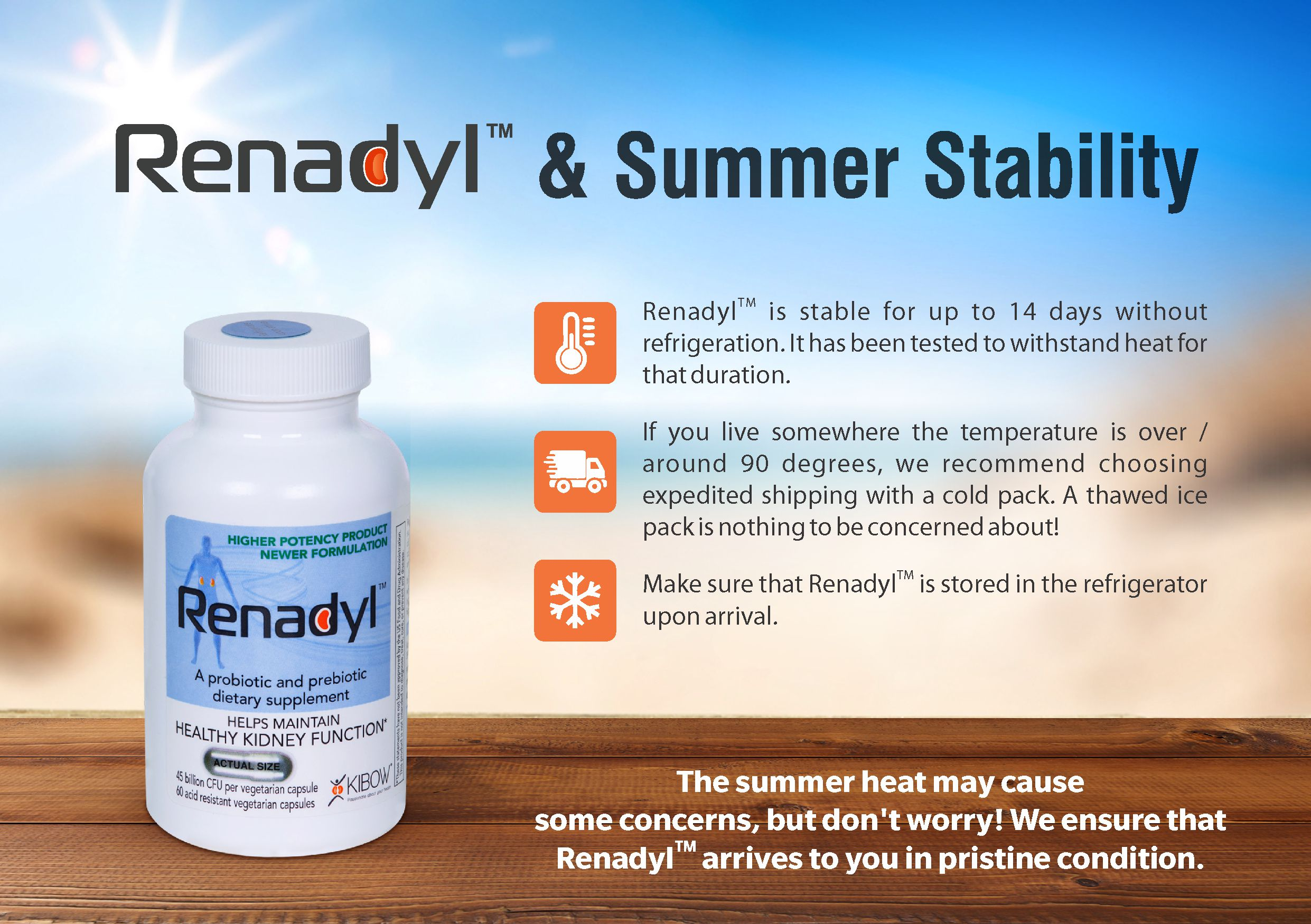 renadyl-summer-stability.jpg
