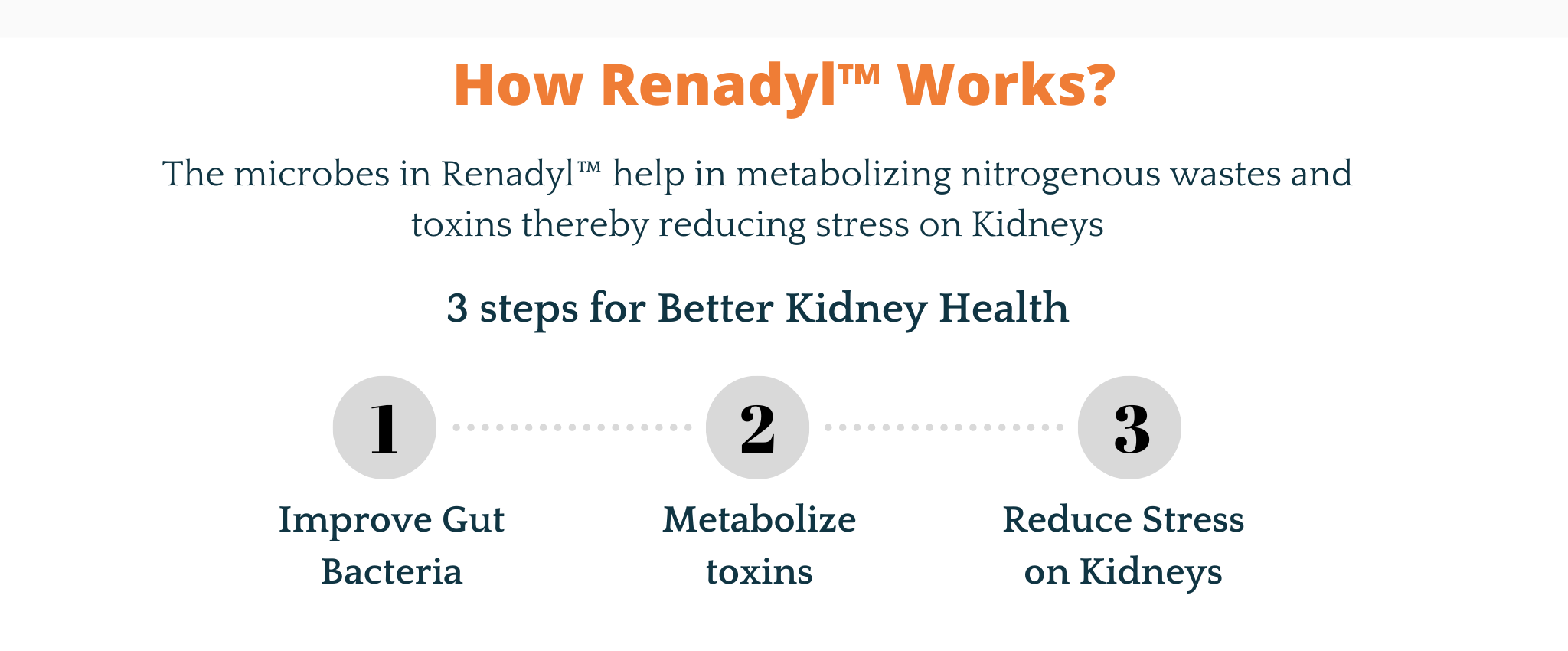 renaydl-kidney-health-3-steps.png