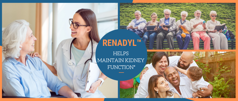 top-causes-of-kidney-problems.png