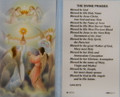 Divine Praises Laminated Holy Card