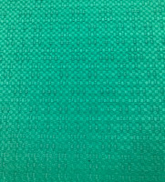 Coastal Green Cotton Brocade