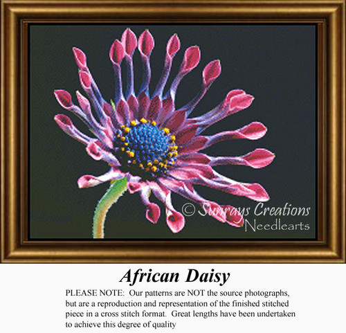 African Daisy, Flowers Counted Cross Stitch Pattern