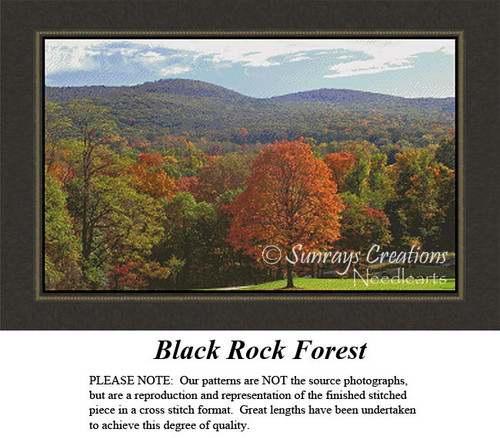 Black Rock Forest, Alluring Landscape Counted Cross Stitch Pattern