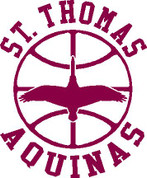 ST THOMAS (Basketball-51) HOODIES