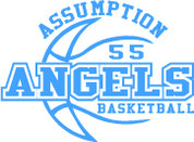Our Lady of  Assumption (Basketball-14) HOODIES