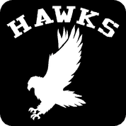 Hawks - Car Decal
